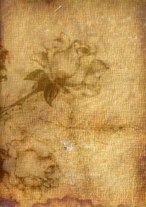 Rose Print in Book